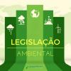 Brasil adere à convenção internacional de Bonn que protege animais silvestres migratórios