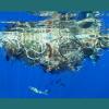 Milhões de animais marinhos são mortos todos os anos por causa de materiais de pesca abandonados no mar