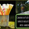 Cresce movimento para banir o uso de canudinhos de plástico