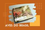 Livro retrata aves que habitam na Mata Atlântica