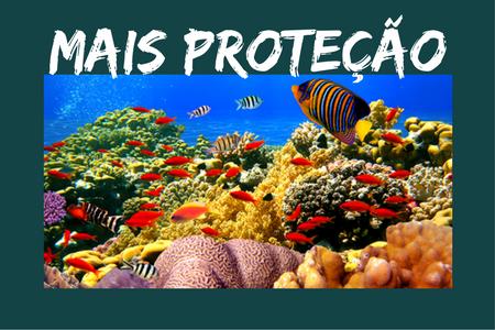 corais2